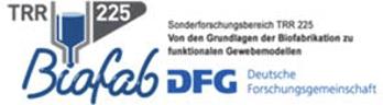 TRR 225 Online Summer School Erlangen 2020